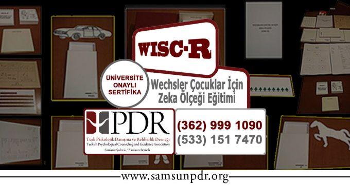 #Eğitim: WISC-R
